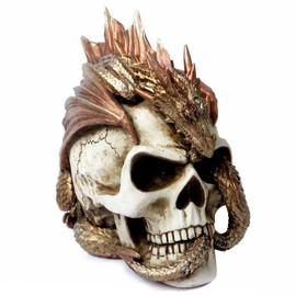 Alchemy Gothic Dragon Keeper's Skull V72