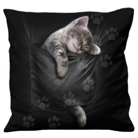 Coussin Spiral Direct Pocket Kitten F052A513