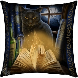 Coussin Gothique Lisa Parker Bewitched