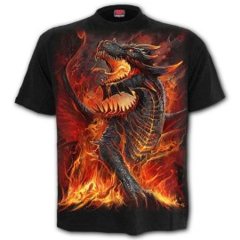 Spiral Direct T-Shirt Draconis L046M101