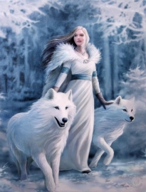toile sur chassis gothique anne stokes Winter Guardian